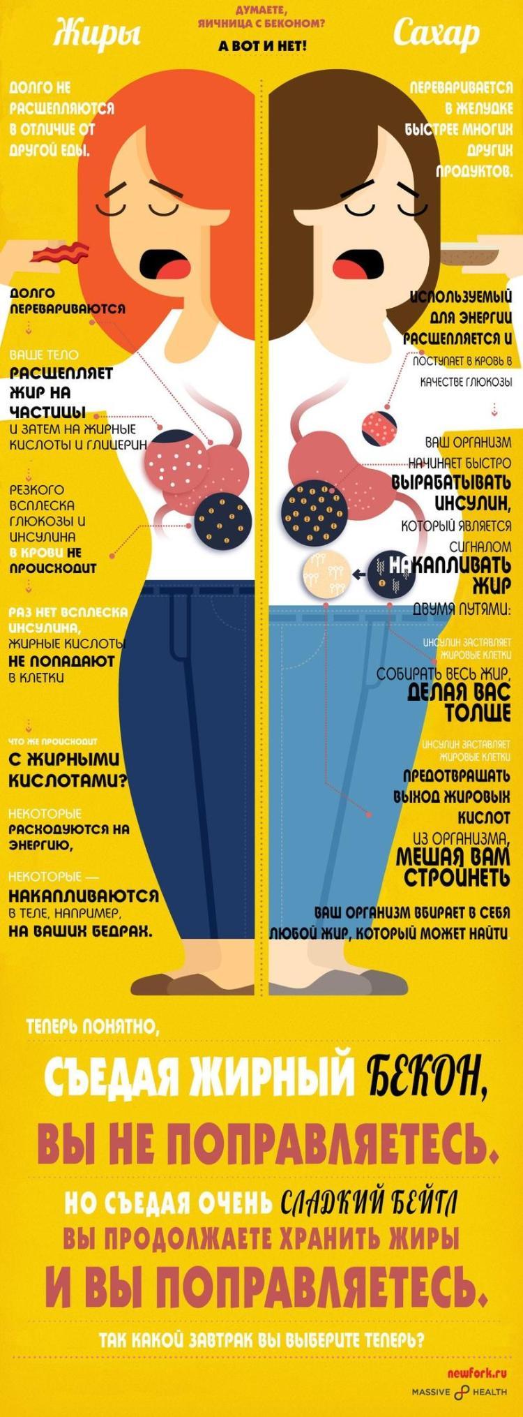 похудение с помощью правильного питания отзывы